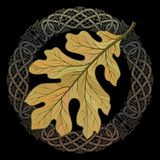 Oak leaf in autumn coloring and Celtic magic ornament. Isolated on black, vector illustration Royalty Free Stock Photos