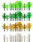 Oak leaf forest - four seasons Royalty Free Stock Photo
