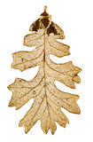 Oak leaf in gold Stock Photo