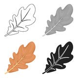 Oak leaf icon in cartoon style isolated on white background. Canadian Thanksgiving Day symbol stock vector illustration. Stock Images