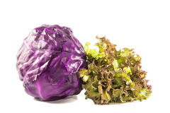 Oak Leaf lettuce and red cabbage  on a white Royalty Free Stock Photography