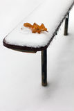 The oak leaf lies on the bench which is swept up by snow Stock Photo
