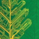 Board oak leaf - the scheme green electronic structure. Oak leaf - the scheme green electronic structure royalty free illustration