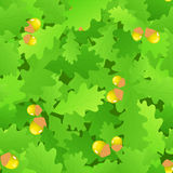 Oak leaf seamless background Royalty Free Stock Photography