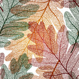 Oak leaf seamless pattern, vector EPS 10 Royalty Free Stock Photo