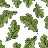 Oak leaf seamless pattern for your design Royalty Free Stock Images