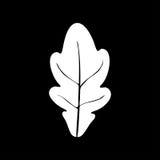 Oak leaf white color icon . Oak leaf it is white color icon Stock Image