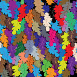 Oak leafs seamless vector background Royalty Free Stock Photos