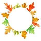 Watercolor autumn oak leaves. Circle frame on white background royalty free illustration