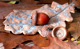 Oak leaves and acorn Stock Photos