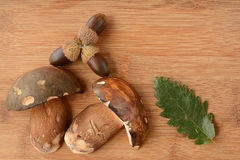 Oak leaves, acorn and Dark cep on wood Stock Photography