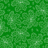 Oak leaves and acorn pattern seamless on green background Royalty Free Stock Images