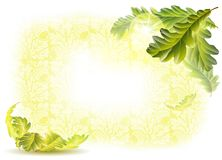 Oak leaves and acorns. Bright frame with oak leaves and acorns stock illustration