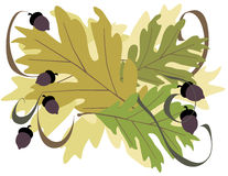 Oak Leaves with Acorns royalty free illustration