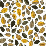 Oak leaves and acorns seamless pattern Stock Images