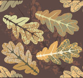 Oak leaves autumn pattern. Seamless Pattern with Oak leaves Stock Image