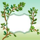 Oak leaves banner Stock Image
