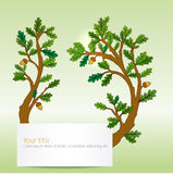 Oak leaves banner Royalty Free Stock Photography