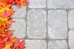 Oak Leaves Border Over Stone Bricks Royalty Free Stock Photos