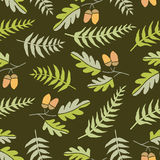 Oak leaves and ferns, seamless background Royalty Free Stock Photos