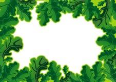 Oak leaves frame Stock Photo