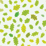 Oak leaves seamless pattern Stock Photo