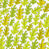 Oak leaves seamless pattern, vector background. Royalty Free Stock Photos
