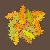 Oak leaves (vector) Stock Photo