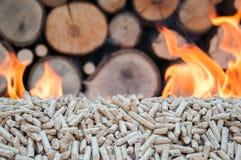 Oak pellets Royalty Free Stock Photo