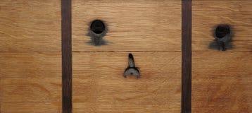 Oak plank 3 Stock Images