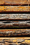 Oak planks Royalty Free Stock Photo