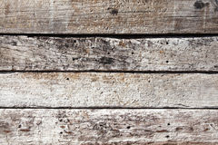 Oak planks background Stock Images