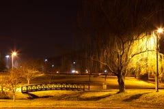 Oak Ridge Lizenzfreie Stockfotos