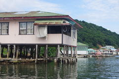 Oak Ridge on east side of Roatan Stock Photos