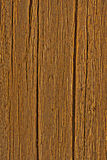 Oak secular, texture old wood Stock Images
