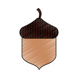 Oak seed isolated icon. Vector illustration design Stock Image
