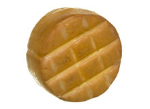Cheddar Cheese Roll, Bottom Side, on white Stock Images