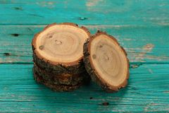 Oak split with growth rings and bark on turqoise background Stock Photos