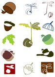 Oak sprout and acorn. Set of icon and logo with oak sprout and acorn Stock Images