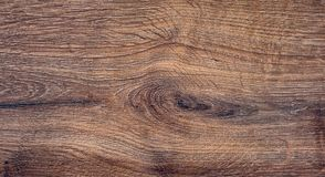 Oak texture. The texture of a tree - workpiece for design_ stock photo