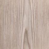 Oak texture wood. Tree background Stock Image