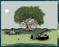 Oak Tree. Vector illustration of oak tree isolated on white backgound. Additional file format Illustrator 8 eps Royalty Free Stock Photos
