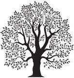 Oak tree. Vector illustration green symbol Royalty Free Stock Photos