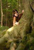 The Oak tree Royalty Free Stock Photography