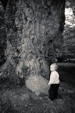 Oak tree and child Royalty Free Stock Photo