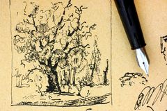 Oak tree drawing by ink with fountain pen. Stock Photos
