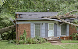 Oak Tree Falls On a Small House Royalty Free Stock Image