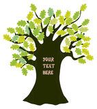 Oak tree - frame for text illustration funny Stock Photo