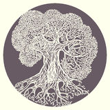 Oak tree illustration. Stylized vector isolated Royalty Free Stock Images