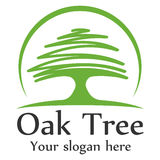 Oak tree logo template. Design vector eps 10 Stock Photos